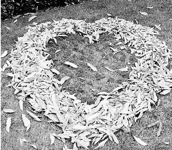 """电子游艺网址:落叶的归宿一定是垃圾桶吗?超牛保洁员""""妙笔生花"""""""