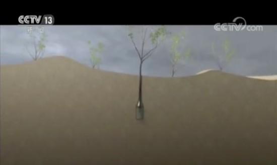 库布其治沙三十年:市场化打造绿色沙漠