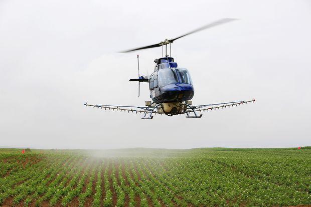 榆阳区现代农业发展