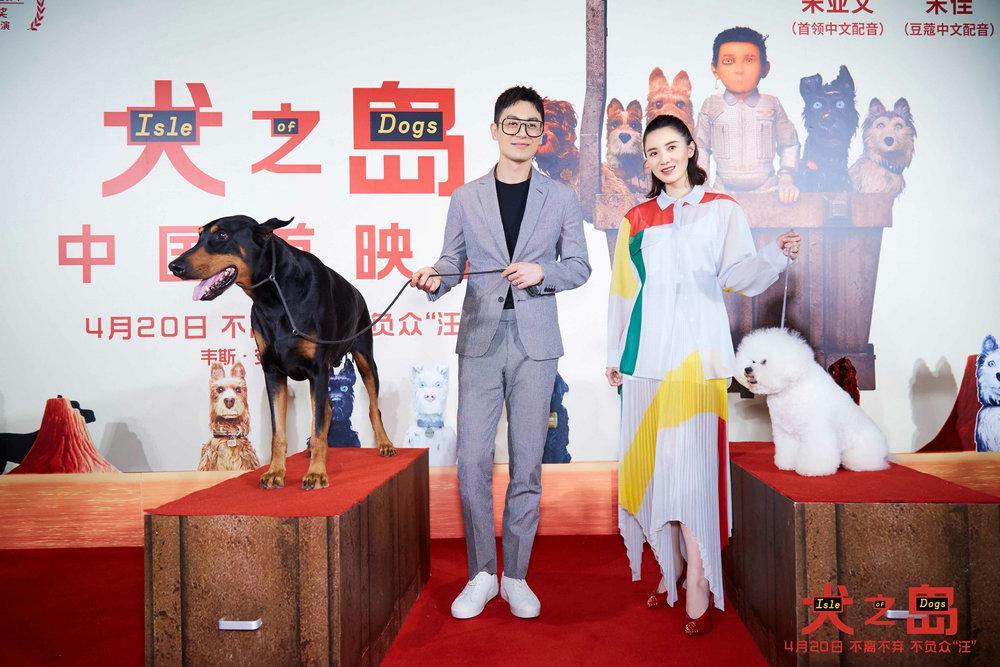 """动画电影《犬之岛》首映 朱亚文宋佳为""""汪""""配音奇葩说 视吧"""