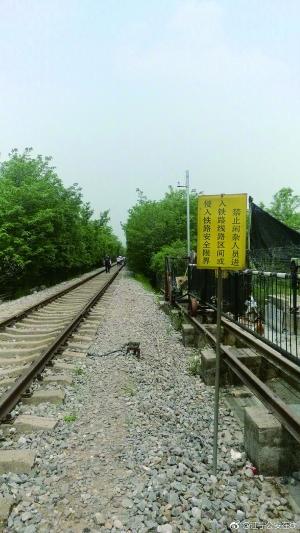 """南京警方劝游客勿赴""""爱情隧道"""":就1条铁路2排树中国古代诗歌大全"""