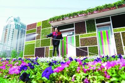 """公厕变成植物园 北京草桥""""绿雕公厕""""成风景(图)终极一班3开镜记者会"""
