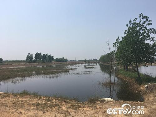 河北晋州环保设备间歇停摆污水直排河流 十人被处分