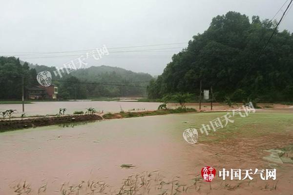 重庆市梁平区出现雷雨大风、短时强降水天气。截止22日09时,全区普降大到暴雨,局部大暴雨。暴雨造成部分农田被淹、农作物受损、低洼路段短时积水等灾情。_副本.jpg