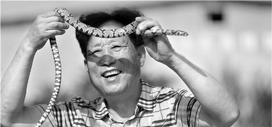 """探秘""""中国第一蛇村"""":有村民一天被咬上百口"""
