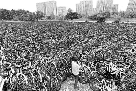 """杭州数万共享单车""""休眠"""" 去路:有的待岗有的外调"""