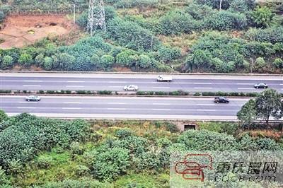 川渝两地将取消高速路省界收费站 实现收费一卡通
