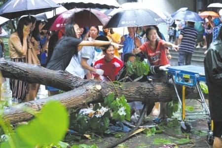 成都狂风暴雨树倒砸中路人 女学生赤脚抬树救人      明星裸照