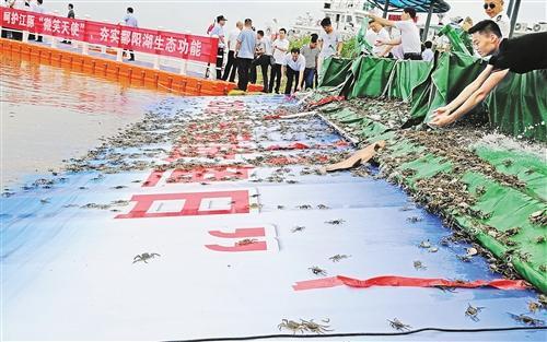 """科学禁渔增殖放流 为长江水生生物撑起""""保护伞"""""""