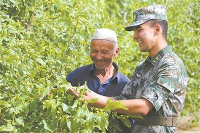 情暖大漠 官兵与和新疆泰新村各族群众并肩战斗