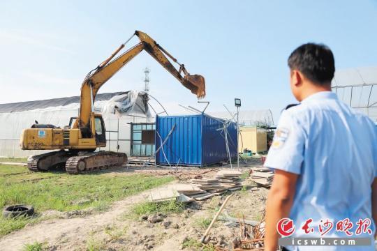 """昨日下午,柯柯农艺梦工厂组织人员对""""共享农庄""""样板房进行自行拆除。  长沙晚报记者 颜开云 摄"""