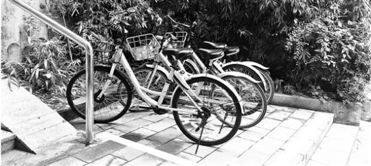 东山弄的单车,不再叠罗汉