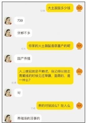 旱獭疑现身紫竹院公园 相关部门:不宜作为宠物饲养