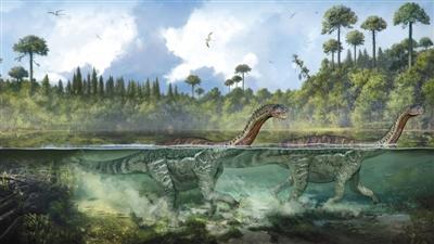 茅台镇现侏罗纪早期大型恐龙足迹群 多达250个(图)