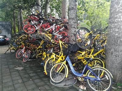 用户吐槽车难找 北京减少的两成共享单车都去哪了?