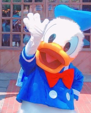 迪士尼的唐老鸭把网友萌翻了:哄半天发现抱错孩子