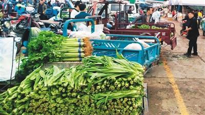 探访中国北方最大农产品批发市场