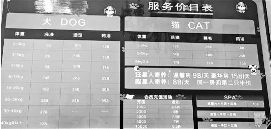 2018年中国宠物(犬猫快乐大本营小葡萄)消费市场规模达1708亿