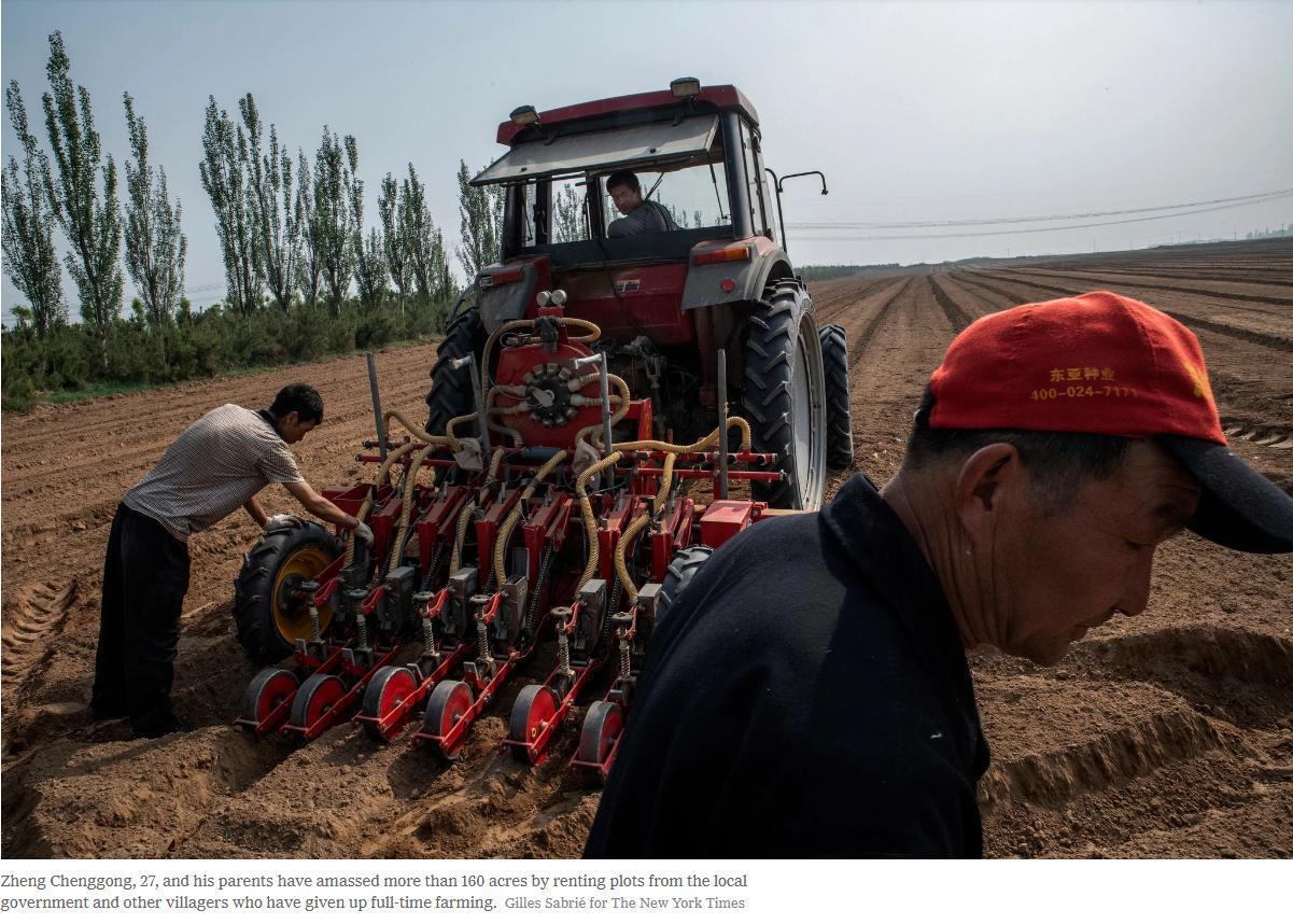 """外媒关注中国农村之变:致富路上守住""""乡愁"""""""
