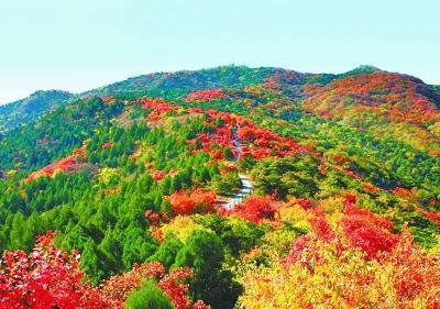 西山国家森林公园 秋日一旬一色彩
