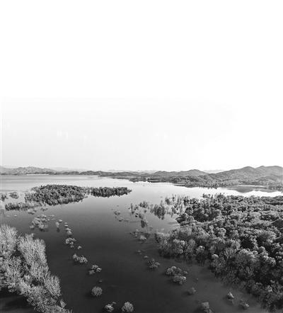 生态涵养区该怎么建?