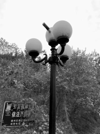 单车弃河道 园灯坏许久