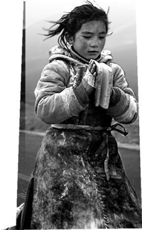 藏语电影创作新体会:从外视角到内视角金华艾青中学中美班