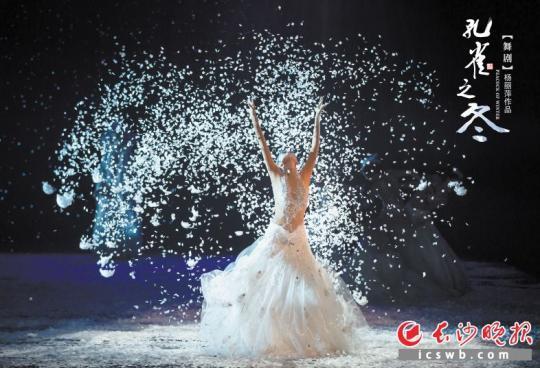 杨丽萍《孔雀之冬》登陆剧院:美源于精神的自律