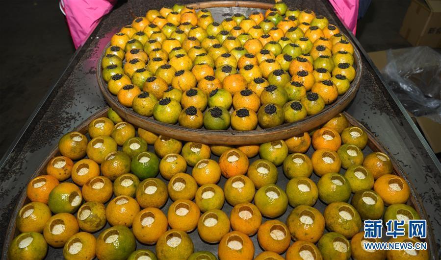 (社会)(4)柑果红 陈皮香