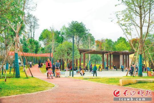 长沙县中南社区公园提质改造后,成为邻近居民漫步休闲的好去处。长沙晚报通讯员 曾诗怡 摄