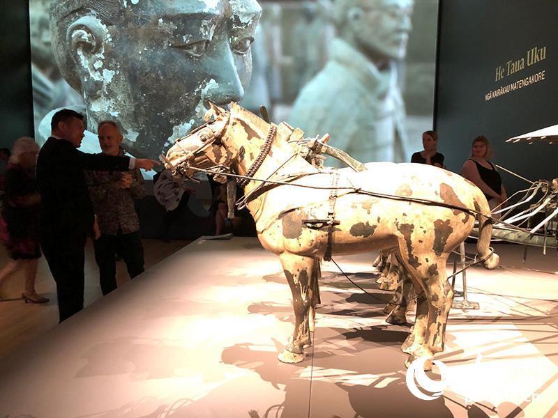嘉宾在蒂帕帕博物馆参不都雅秦首皇兵马俑展览。 人民网记者 刘天亮摄