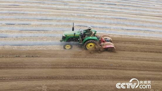 现如今,种植土豆早已经机械化了。
