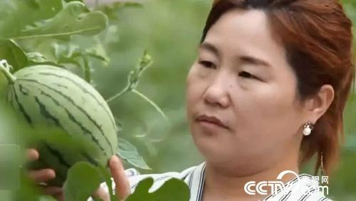 【改革盛开40年·共话三农】把住时代脉搏 异域农民再扬风帆