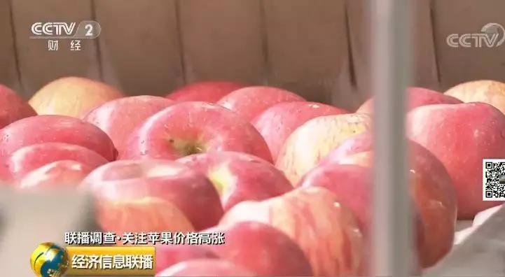 苹果价格站上近5年高位贸易商压货惜售 为啥这么火?