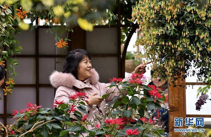 """新华时评:让春节消费迎来""""开门红""""的劲风吹下去"""