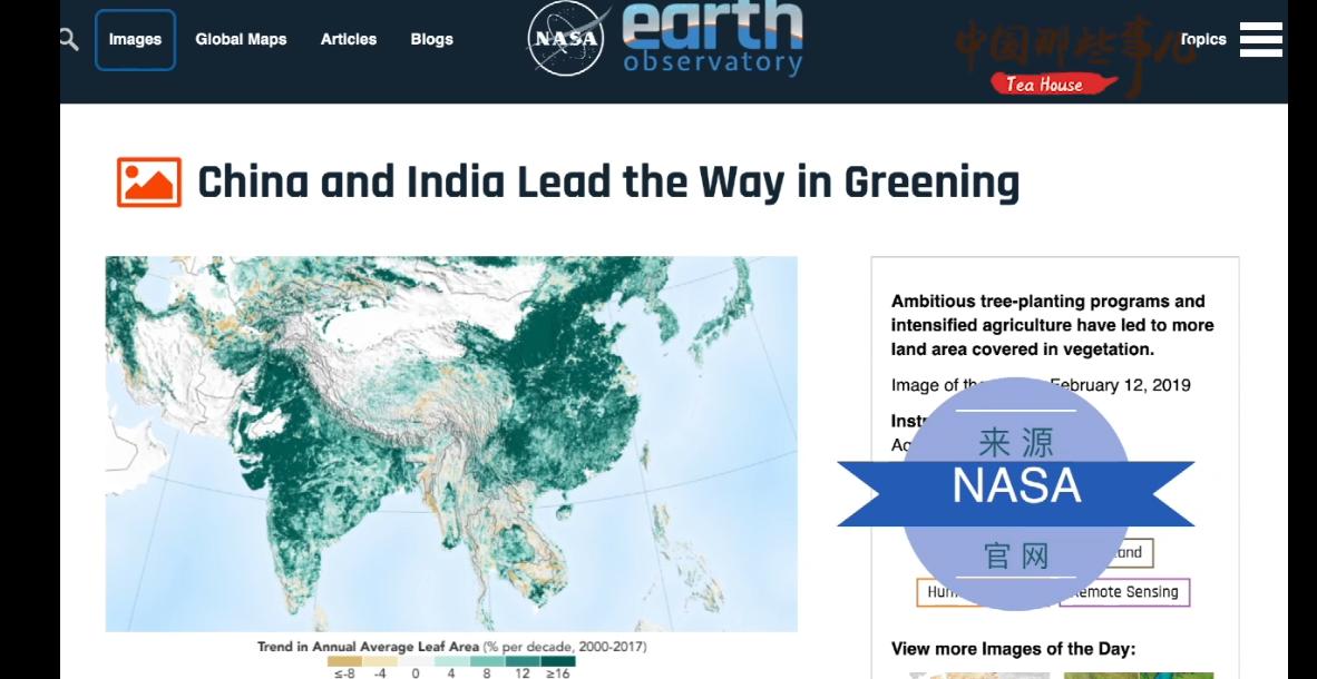 植树添新绿扶贫再创新中国这一壮举造福全世界