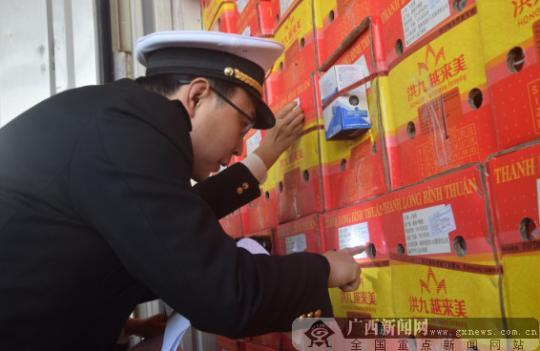 海关执法人员对进口的水果进行查验。广西新闻网记者周隆富 摄
