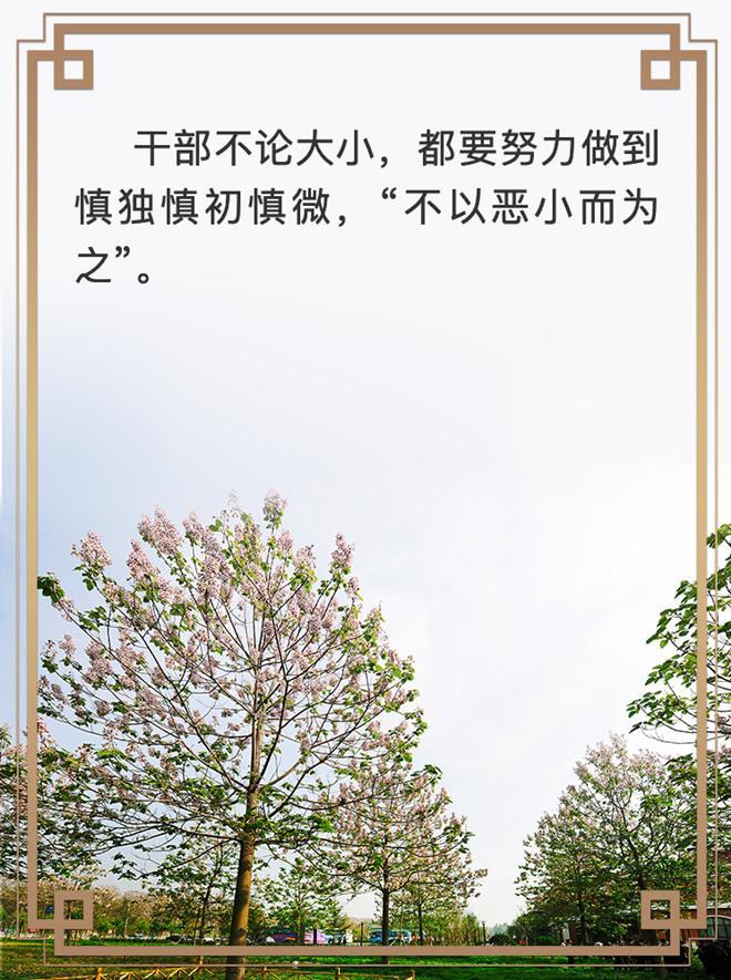 """重温""""兰考会议集会会议是中新社""""上习近平的这些叮嘱"""