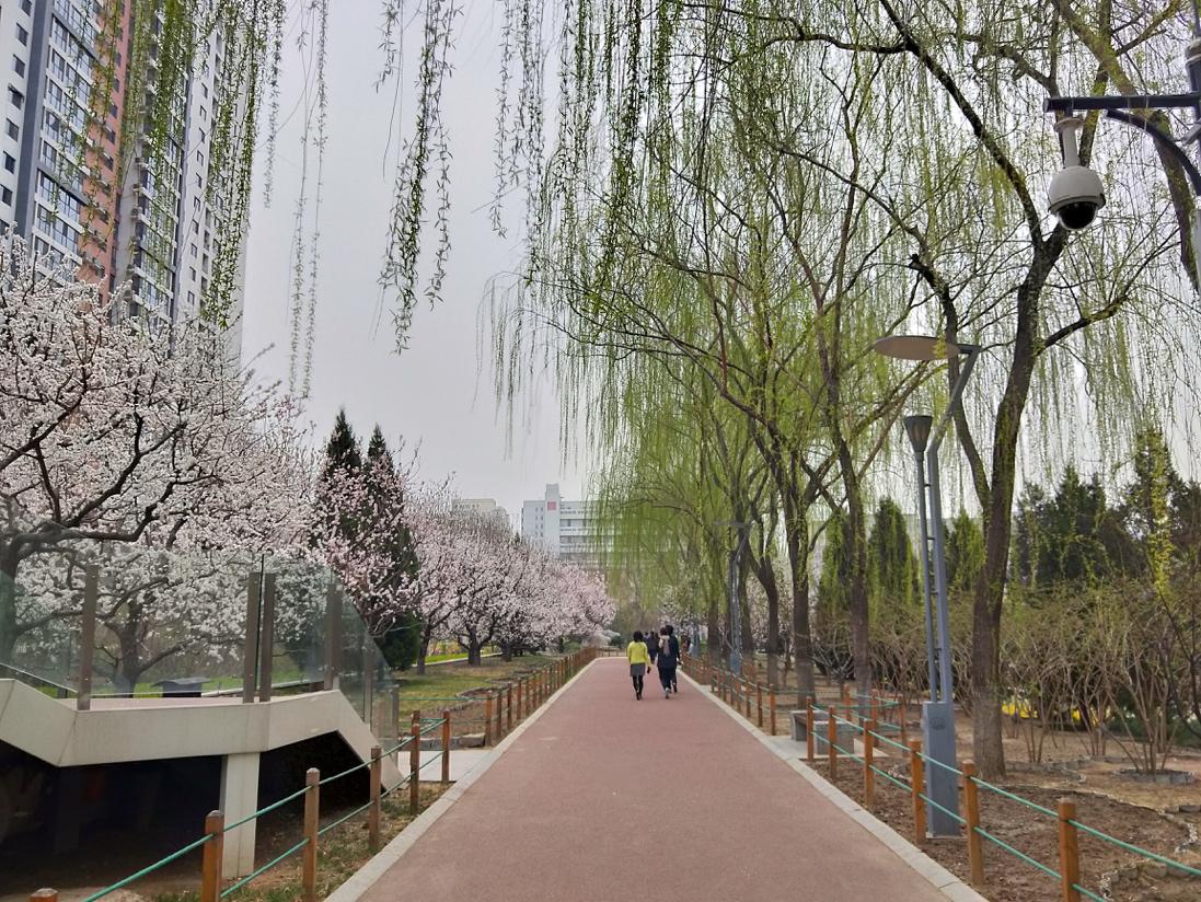 http://www.k2summit.cn/caijingfenxi/495872.html