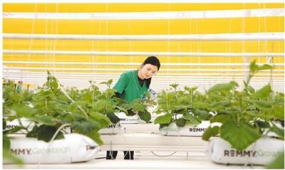 """国内互联网巨头加快布局""""智慧农业""""为何受青睐?"""