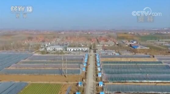 农业农村部:农村集体产权制度改革深入推进