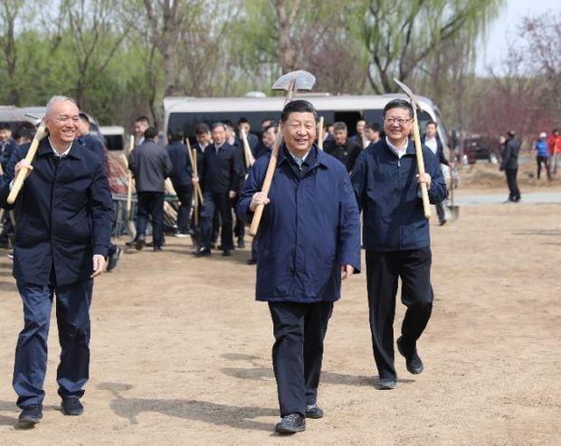 每年春天,习近平总书记都会参加这项活动