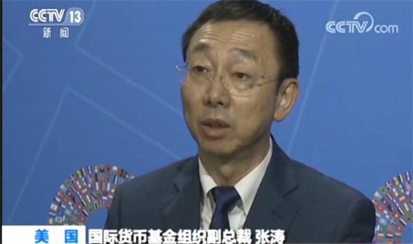 国际货币基金组织副总裁张涛