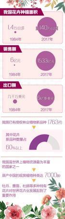 2017骞撮攢鍞棰1533浜中新社讲 鑺卞崏绂烩滄棩甯告秷璐瑰
