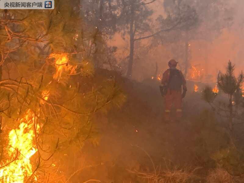 云南丽江城郊发生森林火灾 180余人赶到现场扑救