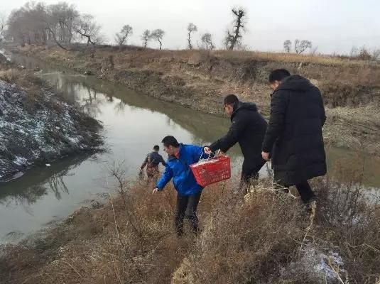 """环保督察""""回头看"""":吉林辽河流域黑臭水体整治不力"""