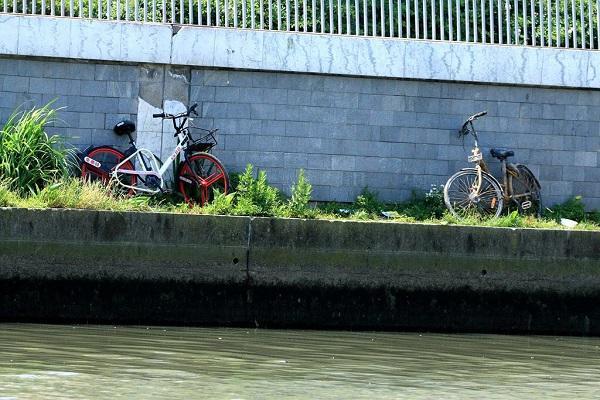 火乡路上的同享单车.jpg