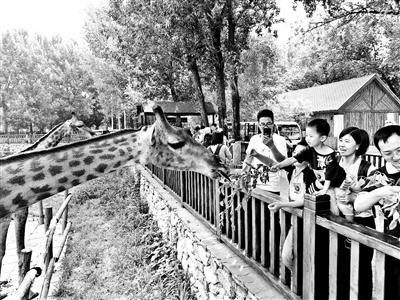 北京野生动物园本月增添猛兽体验区