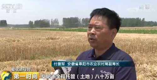 """懊挥姓:农机疾速增长 """"麦客""""转型合理时"""