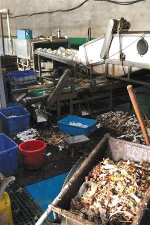廊坊问题消毒餐具生产工厂被查 产品仍有餐厅使用
